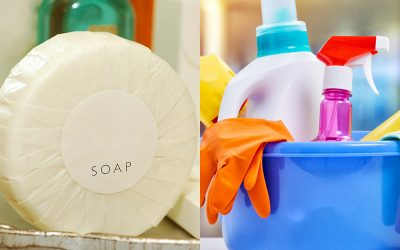 Hygiene & Hospitality